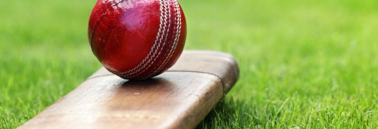 Best Places to Play Cricket in Baliawas,Gurgaon