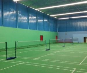 kayns badminton Arena