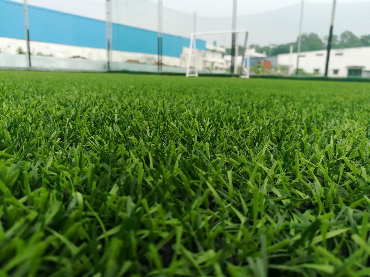 "New Turf Launch in Hyderabad ""THE PITCH"""